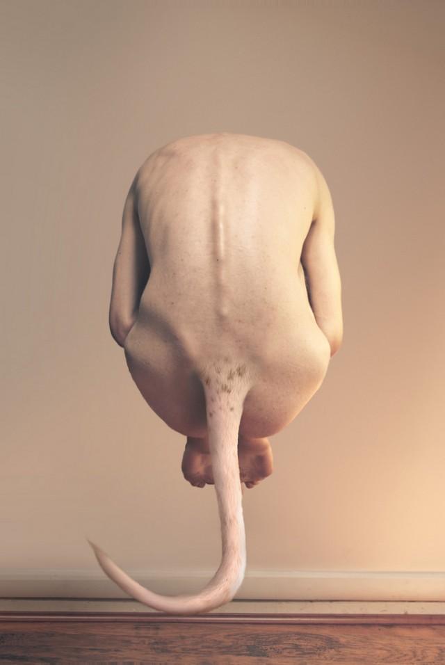 Jonathan Ducruix - Egg-O