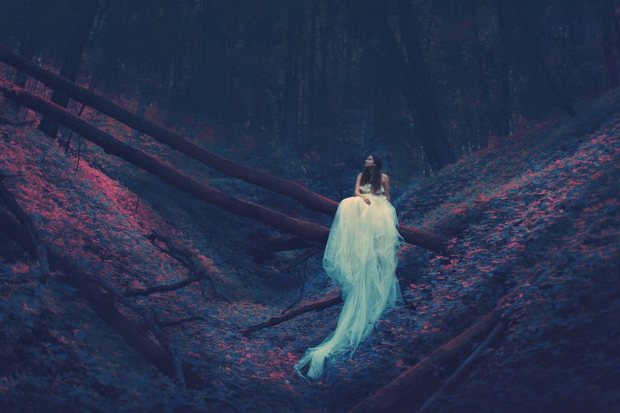 Katerina Plotnikova - Forest