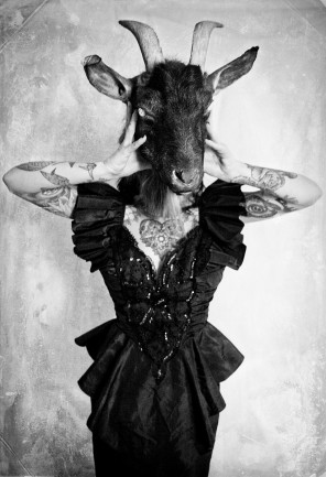 Michelle Fleur Photography - Tilly Dee - designer and taxidermy HereAfter Vintage