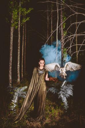 Bonnie Jenkins - Avian Arboreta