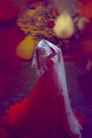 Jiamin Zhu (jajasgarden ig tb same) - Amberlyn.Honestly
