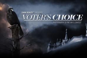 Voter's Choice 21317 FB