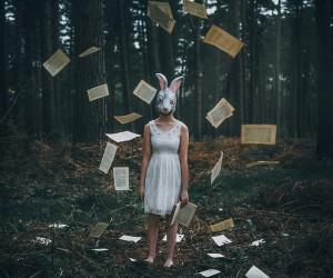 Adam Bird - The White Rabbit