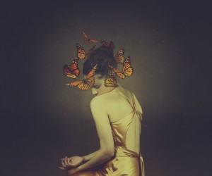 Josephine Cardin - From the Same Cocoon