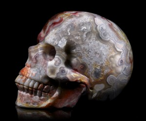 Tommy Flynn (Tommy Skulls) - Red Crazy Lace Agate Skull