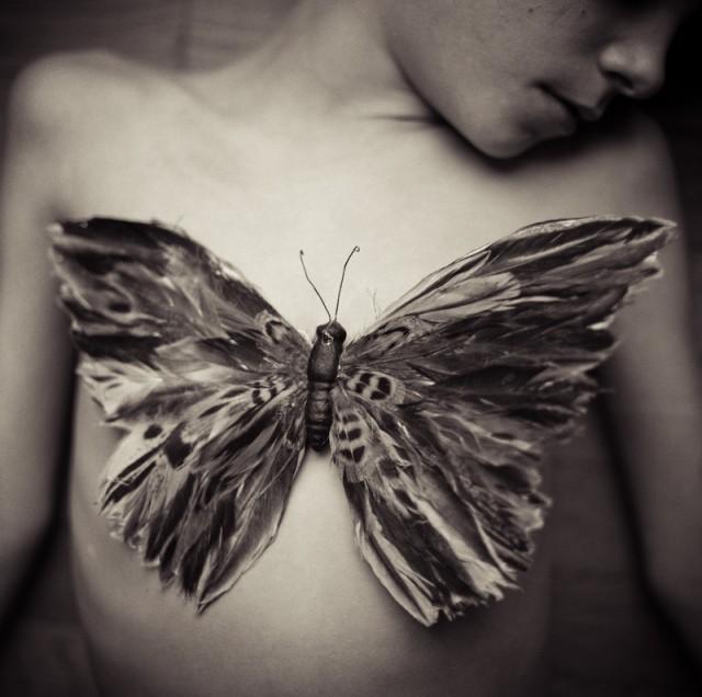 Lori Vrba - Butterfly