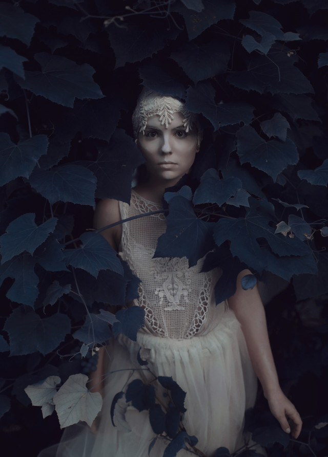 Aleah Michele Photography - Laryssa Fierie - Ivy